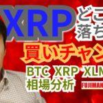 【仮想通貨BTC, XRP, XLM, NEM相場分析】提訴完了でXRPはどこまで落ちる?買いチャンス⁉️