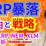 【仮想通貨BTC, XRP, XLM, NEM相場分析】XRP暴落の理由と戦略
