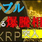 【仮想通貨FX】リップル更なる大爆騰相場へ発展か!?