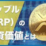 【初心者向け】今、大注目!リップル (Ripple /XRP)とは?ビットコインとの違いや将来性を解説