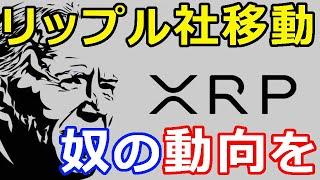 仮想通貨リップル(XRP)リップル社のオフィス移動『あの政権の動向をを見る』