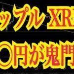 【仮想通貨憶り人チャンネル・XRPリップル局】リップルXRP○○円が鬼門⁈