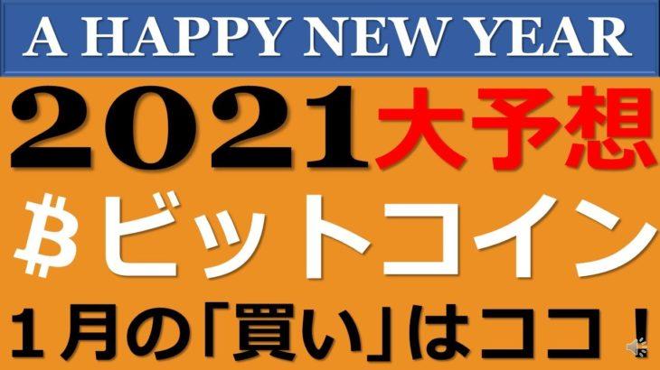 【ビットコイン】2021年のビットコイン大予想!○○○万円⁉1月の買い時もチェック!