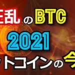 【狂乱のBTC】2021ビットコインの今後