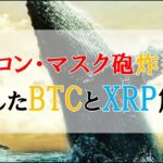 仮想通貨FX:イーロン・マスク砲炸裂!急転したBTCとXRP解説
