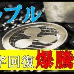仮想通貨FX:リップルV字回復暴騰寸前!!