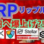 【仮想通貨ビットコイン, イーサリアム, リップル, XLM, NEM, IOST, DOT】XRPが80円へ爆上げ⁉️🚀