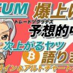 【ビットコイン・イーサリアム・リップル分析】QTUM爆上げ的中!そしてビットコインは今度どうなる?