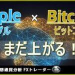 【XRP×BTC テクニカル分析】最高値までは上昇継続!リップル×ビットコイン