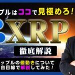 【投資】XRPのエントリーポイント解説!リップルとビットコインの価格連動性が解消されてきた!?「Pump&Dump」が仕掛けられた後のリップルのトレードについて独自目線で検証してみた!