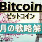 【ビットコイン テクニカル分析】3月の戦略解説。