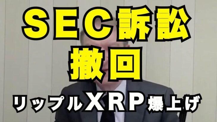 リップル XRP SEC訴訟 撤回・取り消し 暴騰する可能性 ビットコイン 最高値を更新し続けるとbitcoinが増えていくトレード手法
