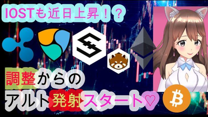 04/12【仮想通貨】BTC&ETH&XRP&NEM&IOST相場分析♡毎日聞くだけで勝率UP♪寝る前や通勤の合間に♡