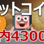 ビットコインは年内に4300万円まで爆上げるのか?