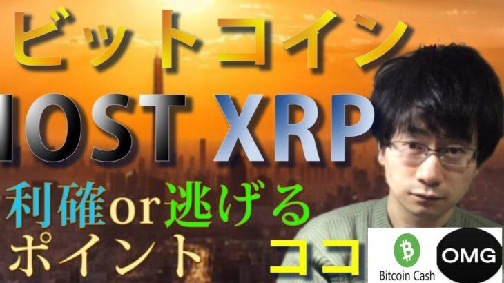 【仮想通貨ビットコイン,BCH,IOST,XRP,OMG】爆上げからの調整フェーズ!!利確or逃げるポイントはココ!