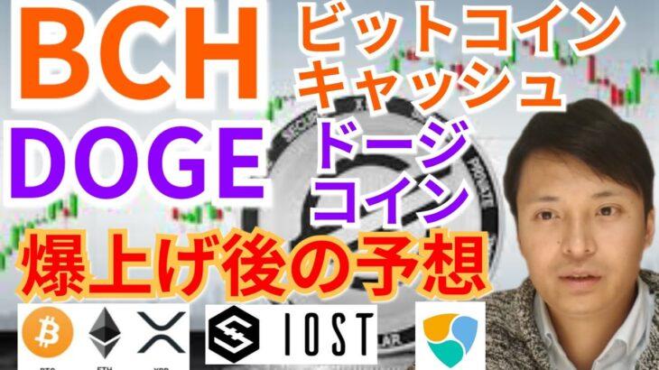 【仮想通貨BTC, ETH, XRP, BCH, IOST, XEM, DOGE】ビットコインキャッシュ&ドージコイン爆上げ後の予想