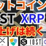 【仮想通貨BTC, ETH, XRP, IOST, NEM, ENJ】ビットコイン、リップル、IOST爆上げは続く