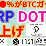 【仮想通貨BTC, ETH, XRP, XLM, IOST, DOT】●●%がビットコインをガチホ⁉️リップル&ポルカドット爆上げ‼️