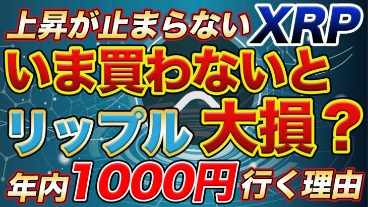 【持たないと損】リップル(XRP)さらに上昇で止まらない 〜年内1000円を越す理由〜