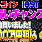 【仮想通貨】ビットコイン爆買いチャンス!1000万円行くので大丈夫です!!