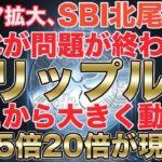 【リップル爆発間際】全ての要素が一つになり1000円を目指す!!!!