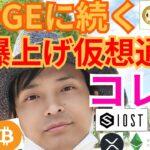 【仮想通貨BTC, ETH, XRP, NEM, IOST, ETC】ドージコイン(DOGE)の続く超爆上げコインはコレ?!