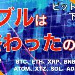 【BTC、ETH、XRP、BNB】ビットコイン下落継続!バブルは終わったのか?(2021年5月22日 相場分析)前半