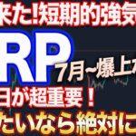 【XRP強気相場!!】即視聴推奨!リップル7月から一変するかも!?今日が最後の仕込み時かもしれません!【仮想通貨】