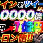【10000倍コイン発見!!】仮想通貨投資で1万円が1億円になる可能性大の草コインを大公開!!イーロンマスクやはり来たか!!【ビットコイン】