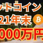ビットコイン 2021年 年末 2000万円🚀‼️🙌【仮想通貨 BTC ETH XRP IOST 】