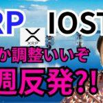 リップル&IOSTなんか調子いいぞ🎵今週反発⁉️日本で65億円の詐欺発生【仮想通貨 BTC ETH XRP IOST BABY DOGE】