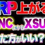 【仮想通貨】リップル11月SWELL?で爆上げする?XSUNC買った方がいいの?