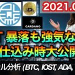 仮想通貨 テクニカル分析【8/30 今後の予想(BTC、IOST、ADA、PLT)】