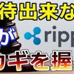 【仮想通貨】リップル(XRP)裁判『迅速な〇〇は期待できない』Hinman氏が鍵を握る