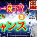 【仮想通貨ビットコイン&アルトコイン分析】もう一段下まで下落!?だとしても拾うチャンス!!