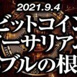 ビットコイン・イーサリアムバブル継続の根拠[2021/9/4]【仮想通貨】