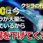 ビットコイン(BTC)は今、クジラが大量に買っているから相場を下げてくる。