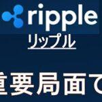 【リップル XRP】上昇優位な環境だが、今週足の確定次第。