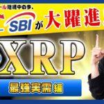 【投資】XRP特集!リップルのアジアパートナーSBIが仮想通貨業界ファンド立ち上げ・提携と大躍進!SEC有価証券問題で法廷闘争中でも歩みを進めるRippleの動きをわかりやすく解説!