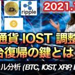 仮想通貨 テクニカル分析【10/10 今後の予想(BTC、IOST、XRP、BNB)】