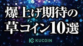 爆上げ期待の草コインの発掘法[2021/10/16]【仮想通貨】
